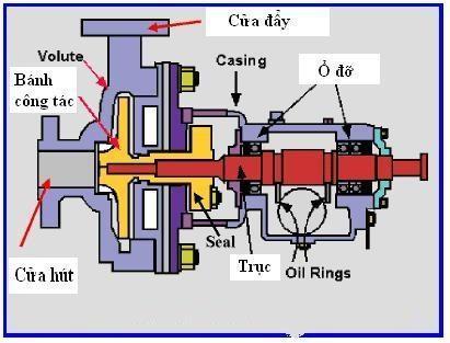 Cấu tạo máy bơm ly tâm rất đơn giản